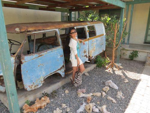 Marley truck